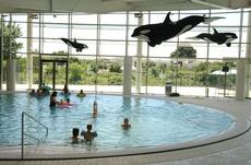 piscine amphitrite