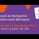 Embedded thumbnail for Conseil de Métropole du mercredi 14 décembre 2016