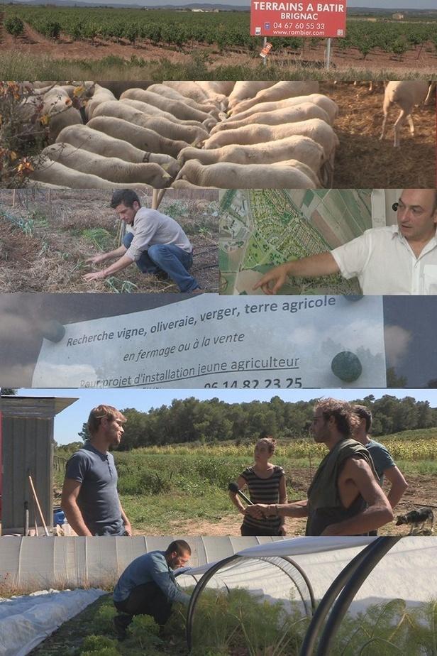 S'installer paysan sans terre et sans capital