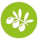 Boutique des Sciences sur l'agrobiodiversité
